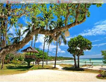 tranh 3d phong cảnh biển 144