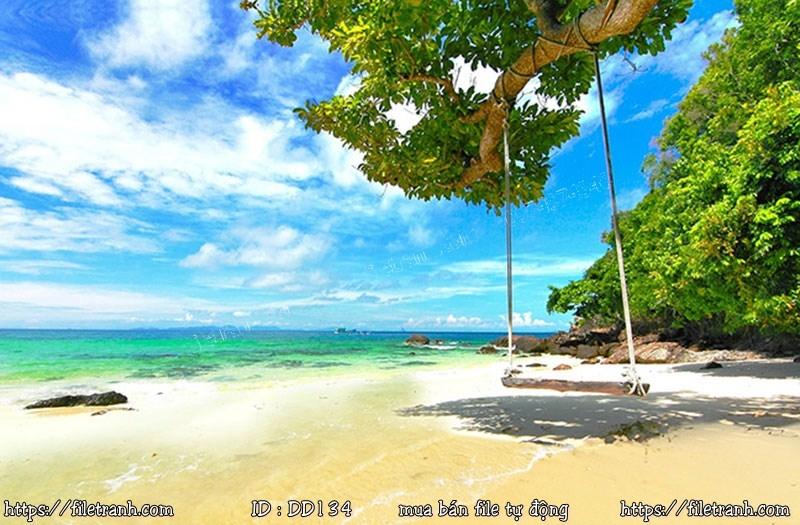 Tranh 3d đại dương cảnh biển 134