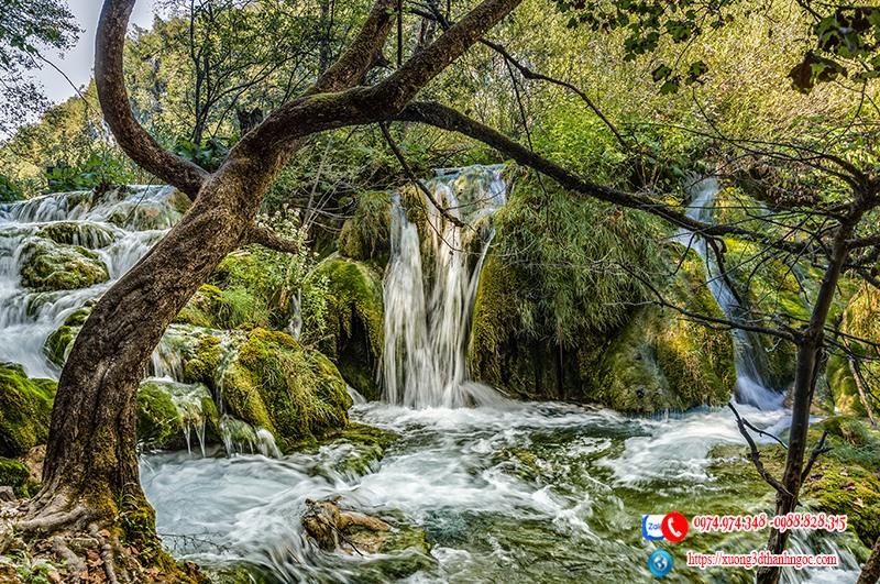 Tranh rừng cây thác nước 3d