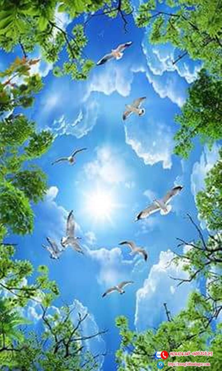 Trần mây trần căng xuyên sáng bầu trời cây xanh 90