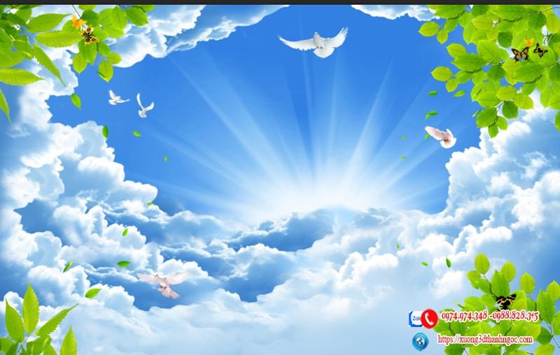 Trần xuyên sáng 3D bầu trời chim câu 92